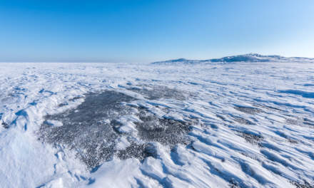 Ice on the Baltic Sea up to the horizon II