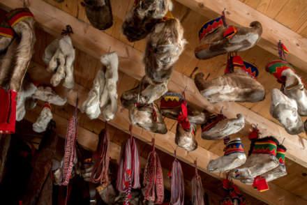 Reindeer shoes
