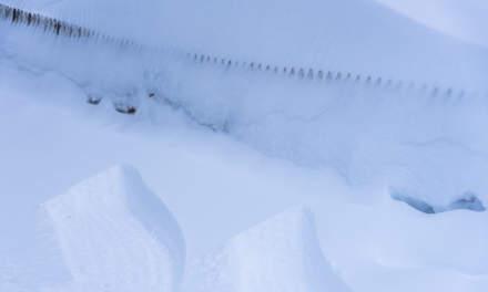 Snowy in Båtsfjord I
