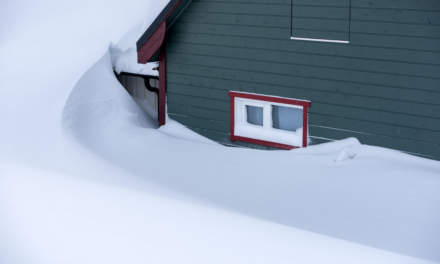 Snowy in Båtsfjord II
