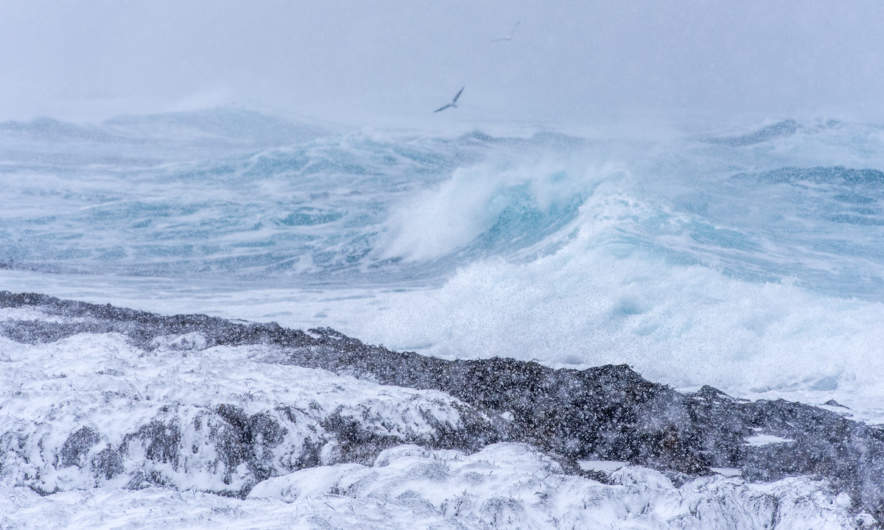 Stormy barents sea I