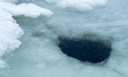 A hole in the ice I