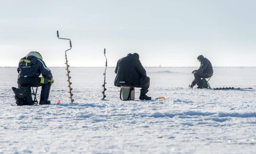 Ice fishers in Skelleftehamn i