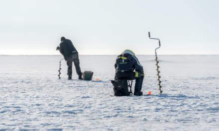 Ice fishers in Skelleftehamn iI