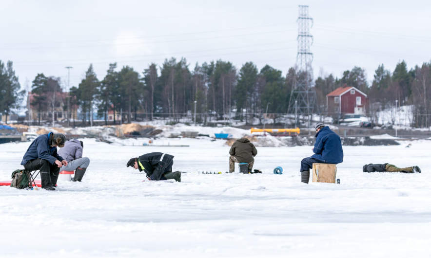 Ice fishing in Skelleftehamn