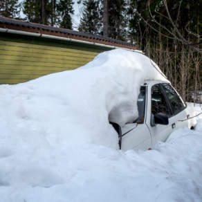 Instead of spring flowers: cars reappear