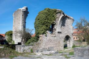 Gotland impressions II