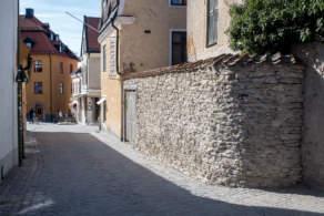Gotland impressions VI