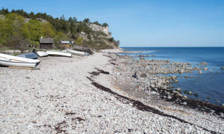 Fossile beach at Irevik