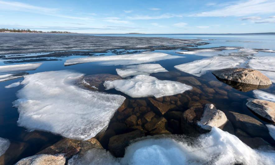 The last ice 2018 VI