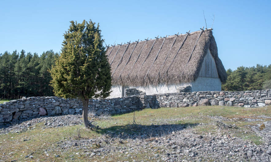 "A house thatched with ""Ag"" (Cladium mariscus)"