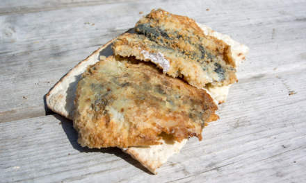 Fried herring, freshly caught in the Baltic Sea