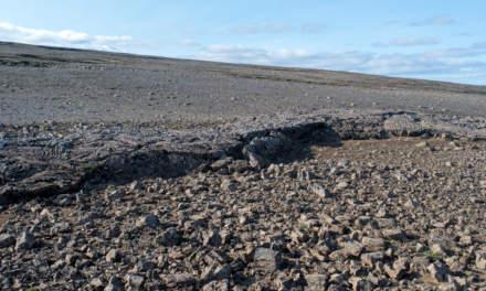 Lava rock desert II