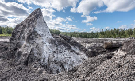 Skellefteå snow dump in summer II