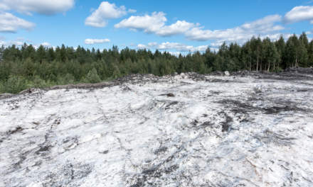 Skellefteå snow dump in summer III