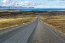 Road X