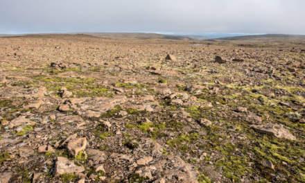 Wide view –Þorskafjarðarheiði