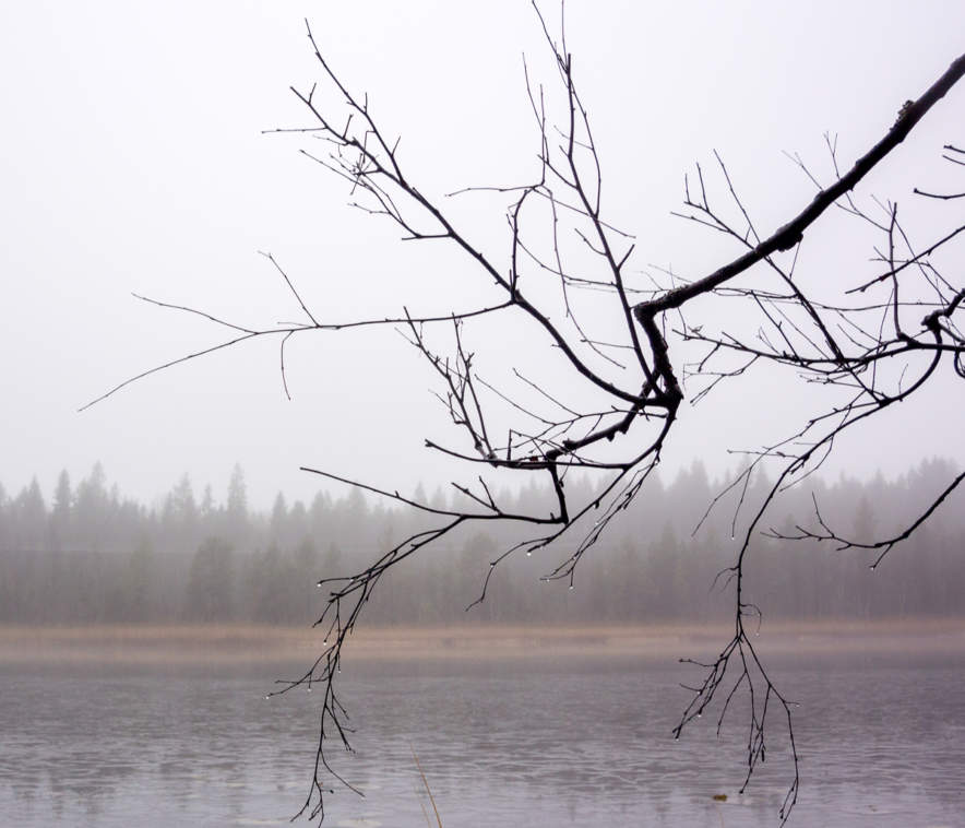 November tristesse II