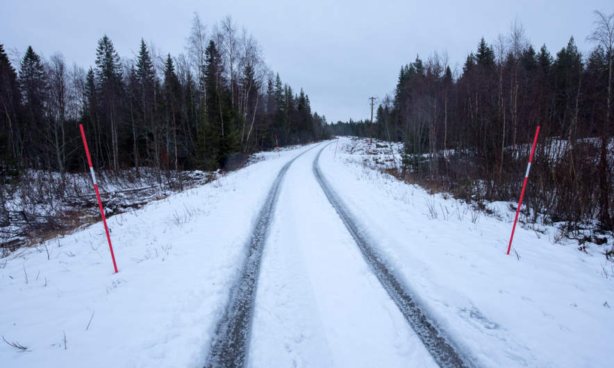 Ångesön main road with our tyre tracks.