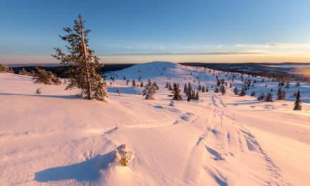 Following the snowmobile tracks