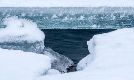 Peeking through an icy hole