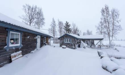 Cottage area II
