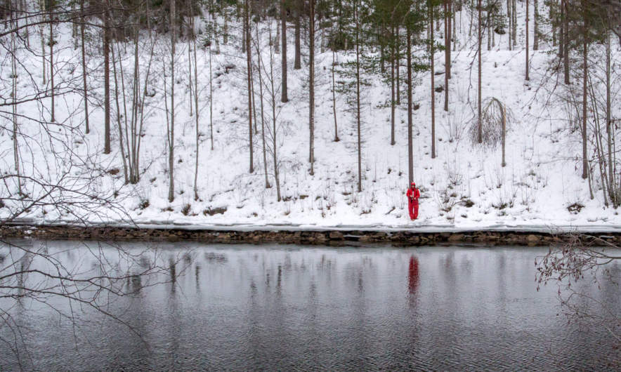 Red fisherman, Skellefteälven