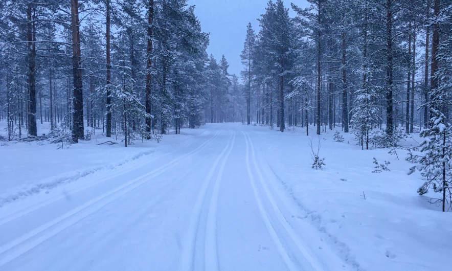 """Ski track """"Olles Spår"""""""