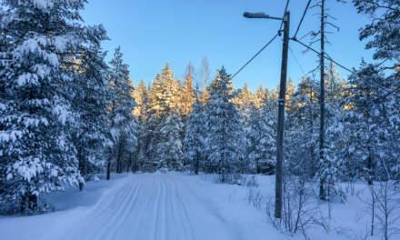 Ski track in Skelleftehamn II