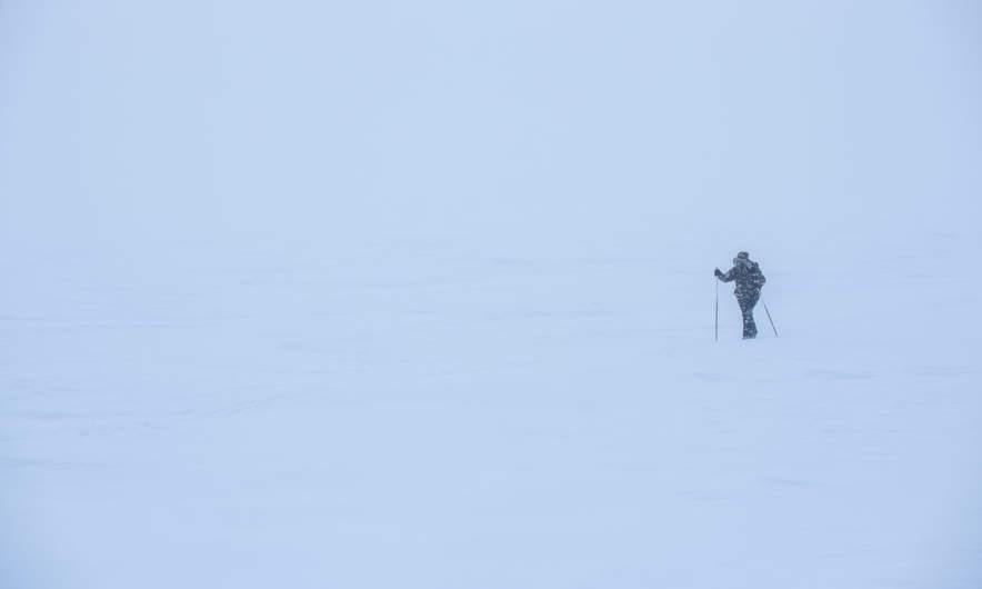 """""""Arctic explorer"""""""