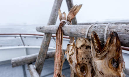 Dried fish II