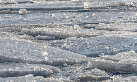Ice floes and waves I