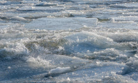 Ice floes and waves II