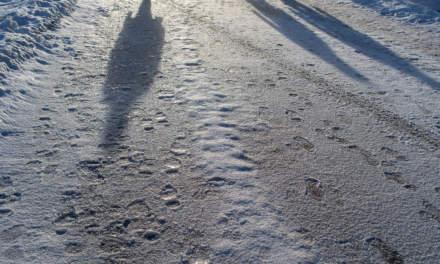 Icy roads I