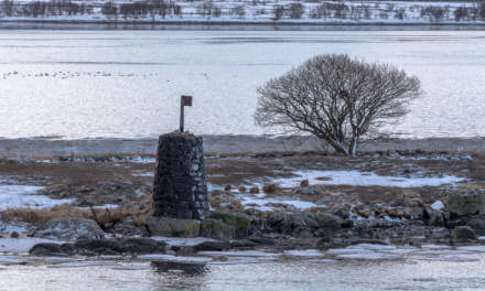 Island beside the Risøyrenna