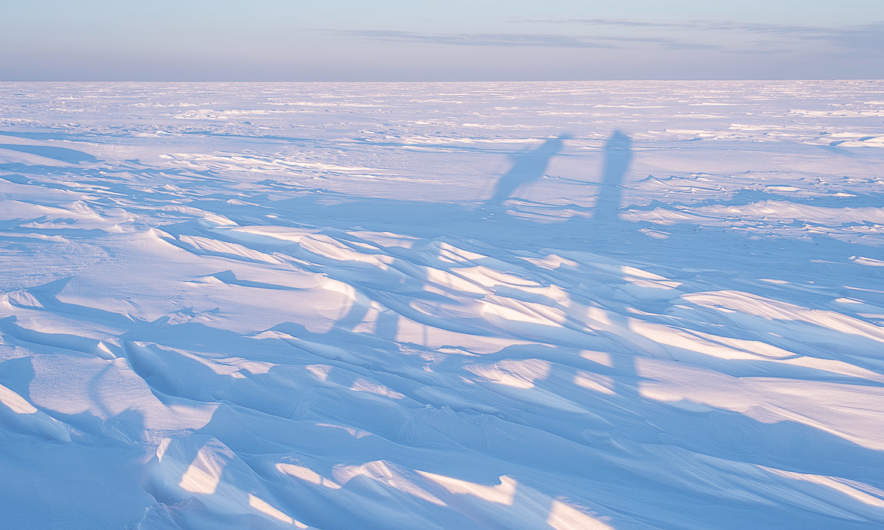 Long shadows on the ice