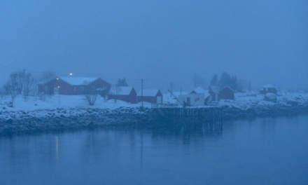 Raftsundet in heavy snowfall I