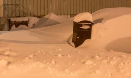 "Snowy ""plogkant"""
