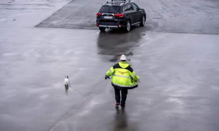 Walking the dog in Nesna