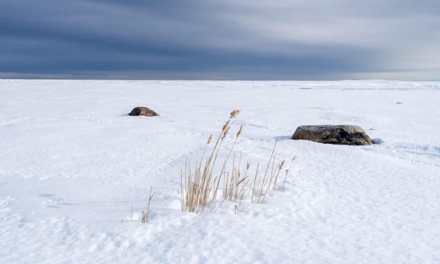 On the island Bredskär