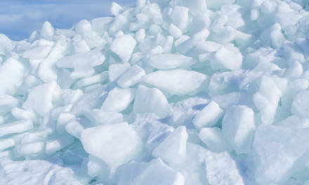 An almost secret world of ice – X