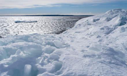 Sea ice and open sea