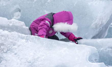 Polar explorer I