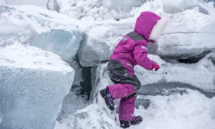 Polar explorer II