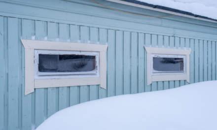 Snowy garage II