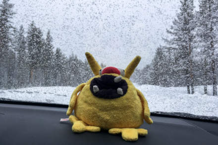 Travelling with the Kleines Gelbes Monster