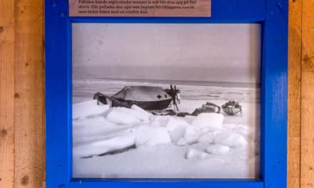 kvarkens-batmuseum-sealing-2