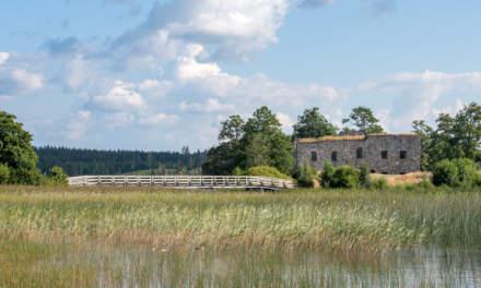 Eksjöhovgård I