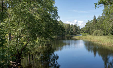 Stensjö by IV – looking at the river