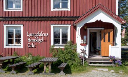 Fika in Ljungdalen I